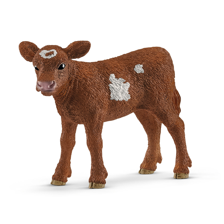 VITELLO TEXAS LONGHORN NEW 01-2019